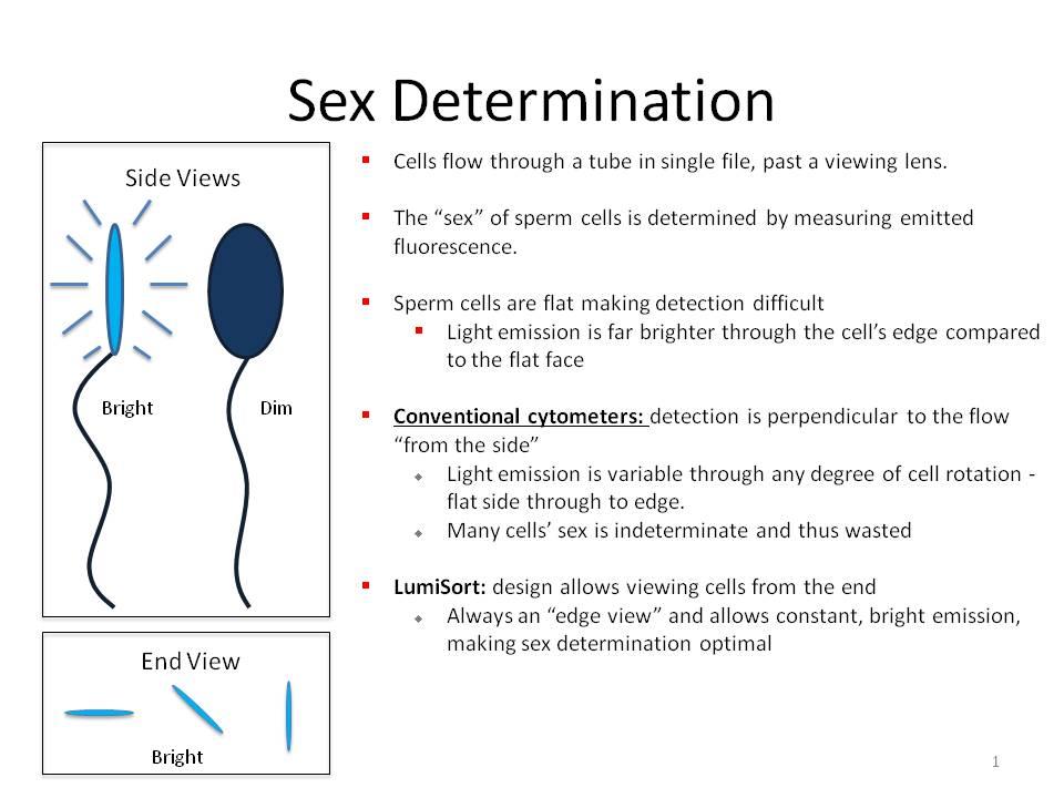 Determine sex