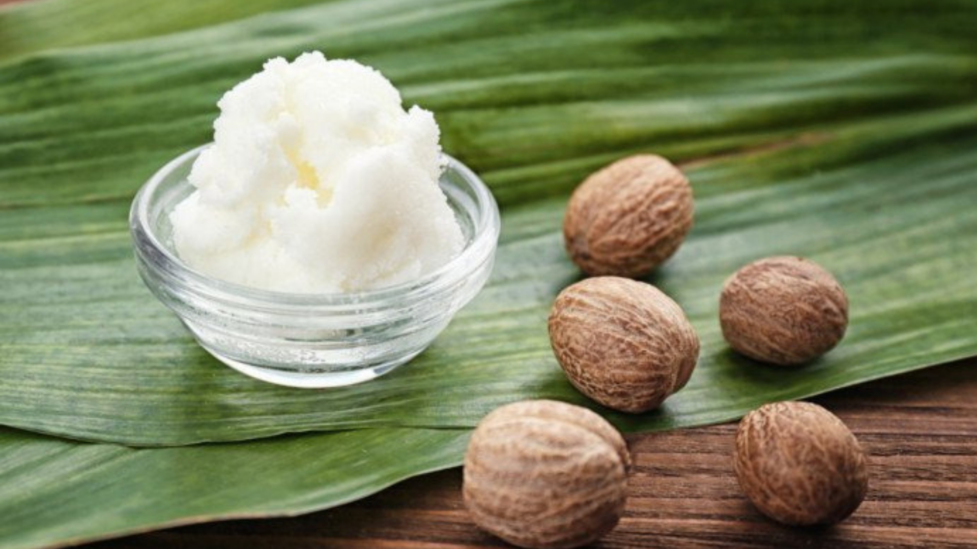 Botanicals Beauty Shea Butter