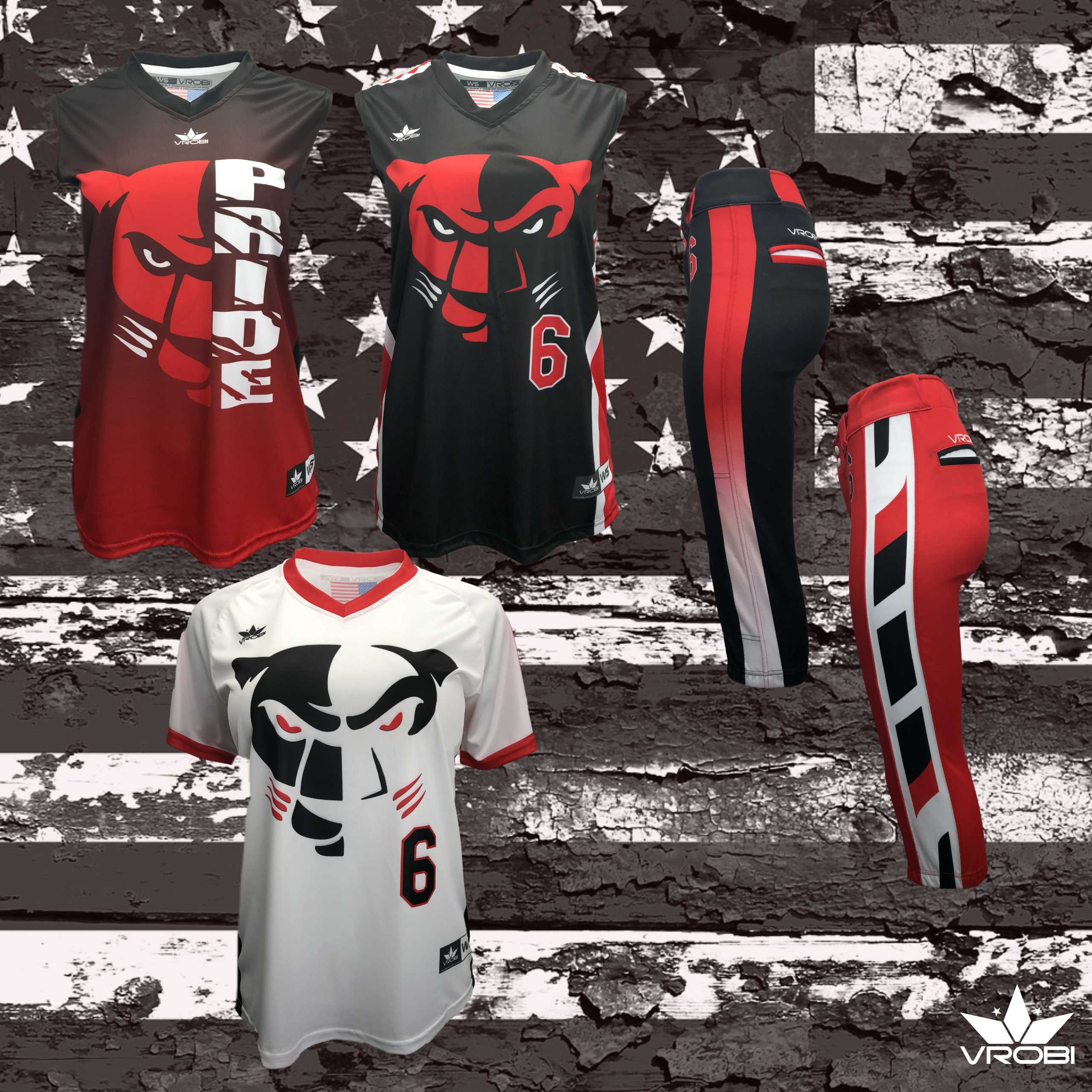 Silver Softball Team Package for Fastpitch Softball Teams showing custom uniforms