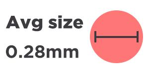 Average dust mite size