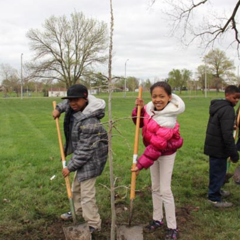 Plant A Tree Day St Louis