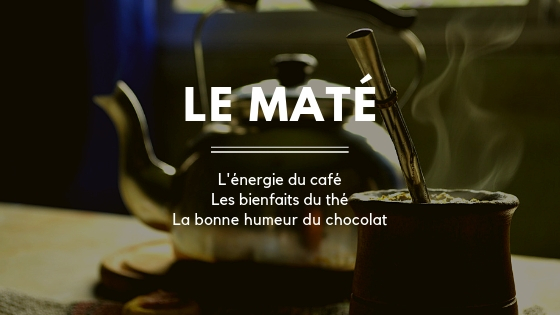Les bienfaits du maté: l'énergie du café, les bienfaits du thé, la bonne humeur du chocolat