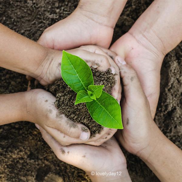 SYNO-Schmuck.com | Nachhaltigkeit - Hände