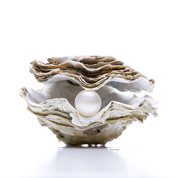 Perle - Perlauster