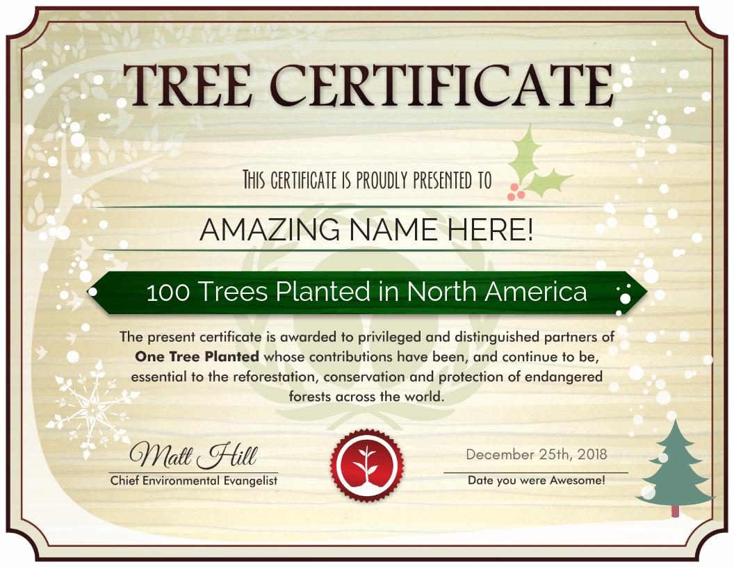 Treecember Certificate