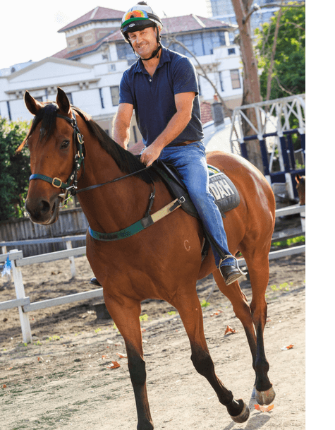 David France Chiropractor Riding Horse