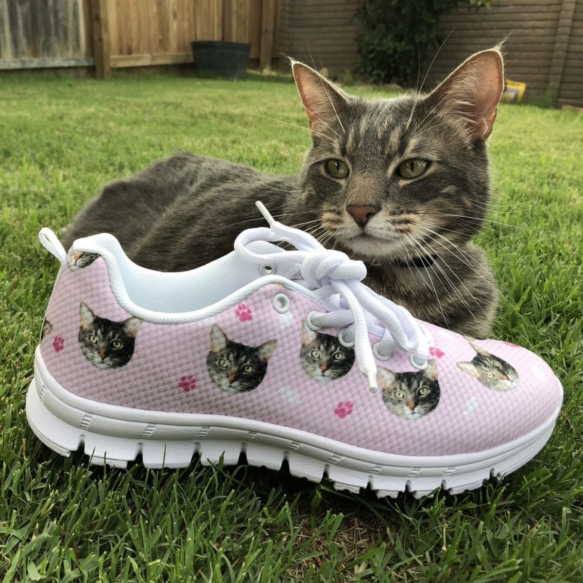 eb9fda5420d34 Personalized Gifts For Cat Lovers - CatsForLife.co