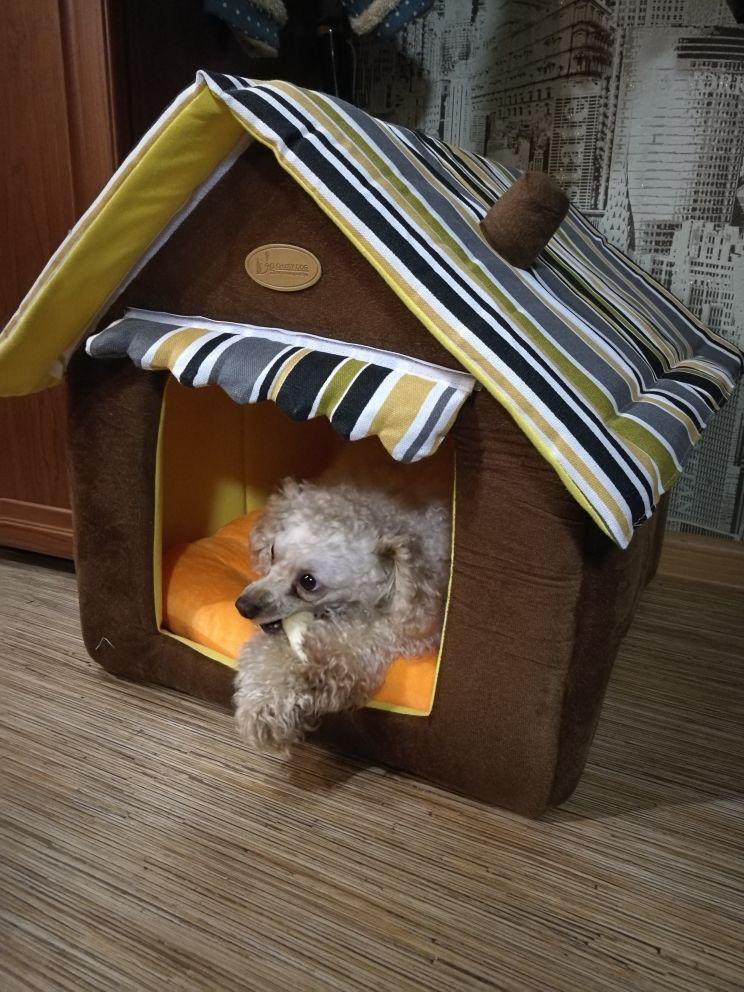 softstripeddoghouse