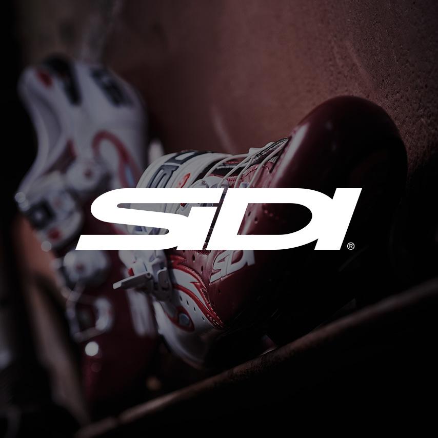Sidi - Saddleback
