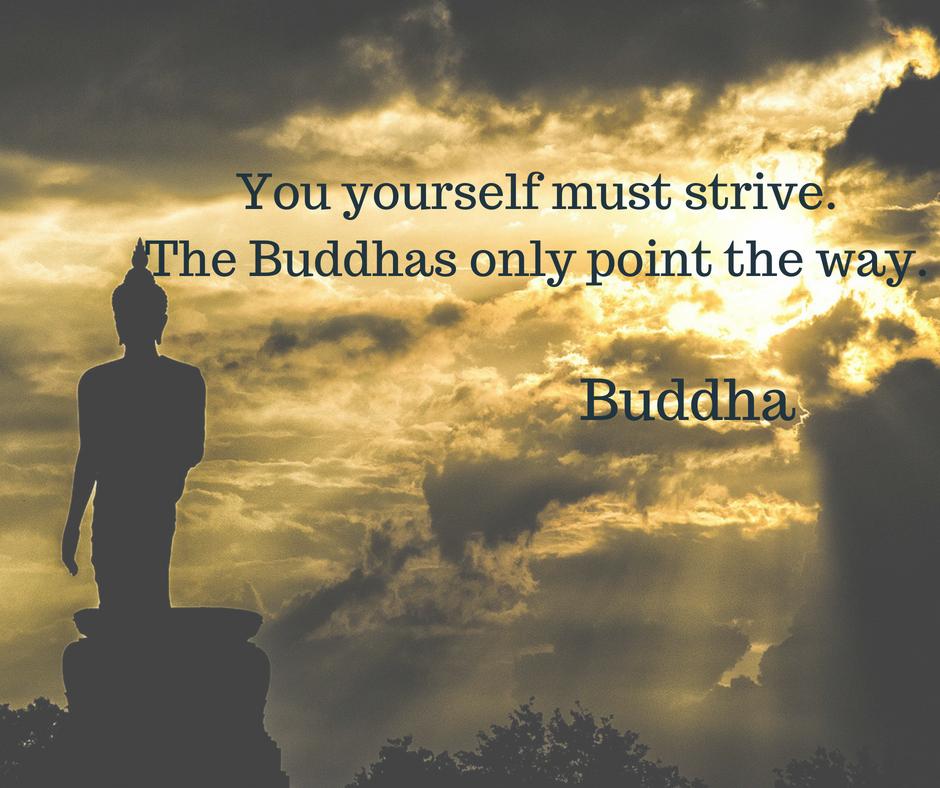 Kết quả hình ảnh cho buddha show you the way