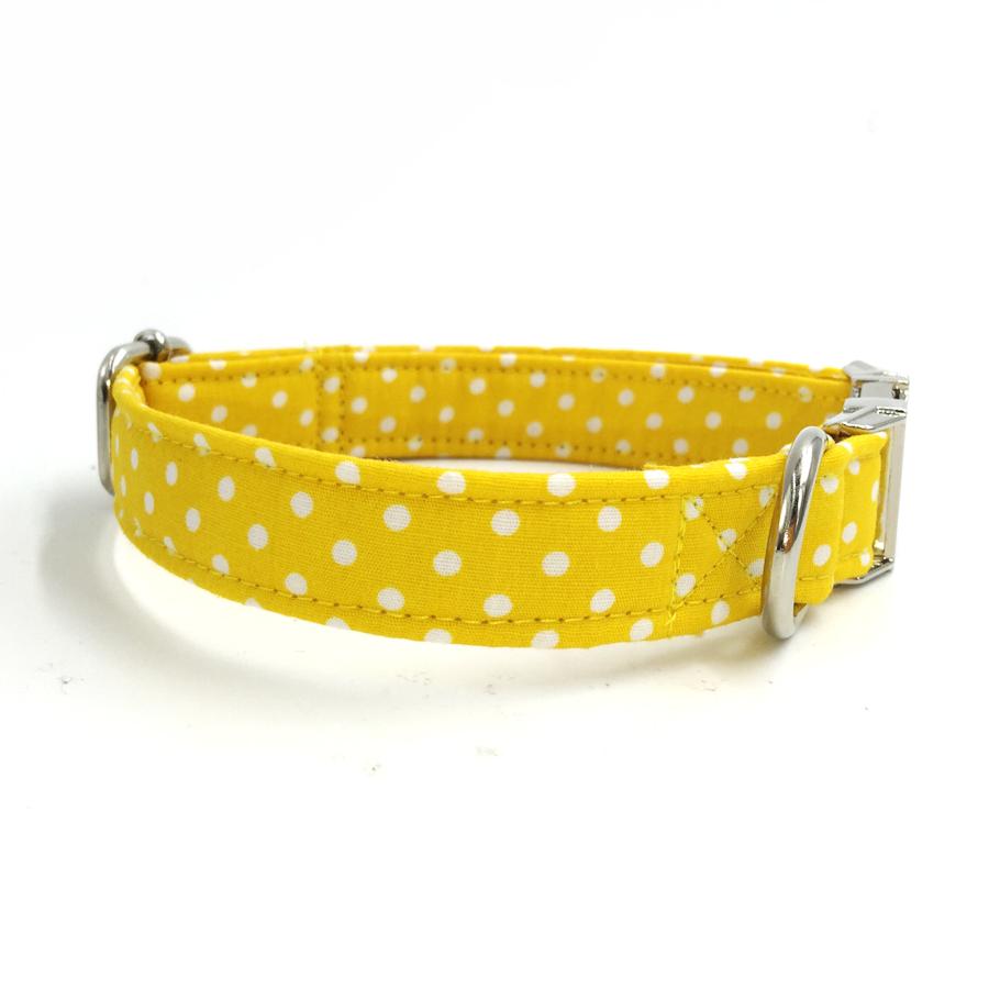 yellowpolkadotdogbowtiecollar