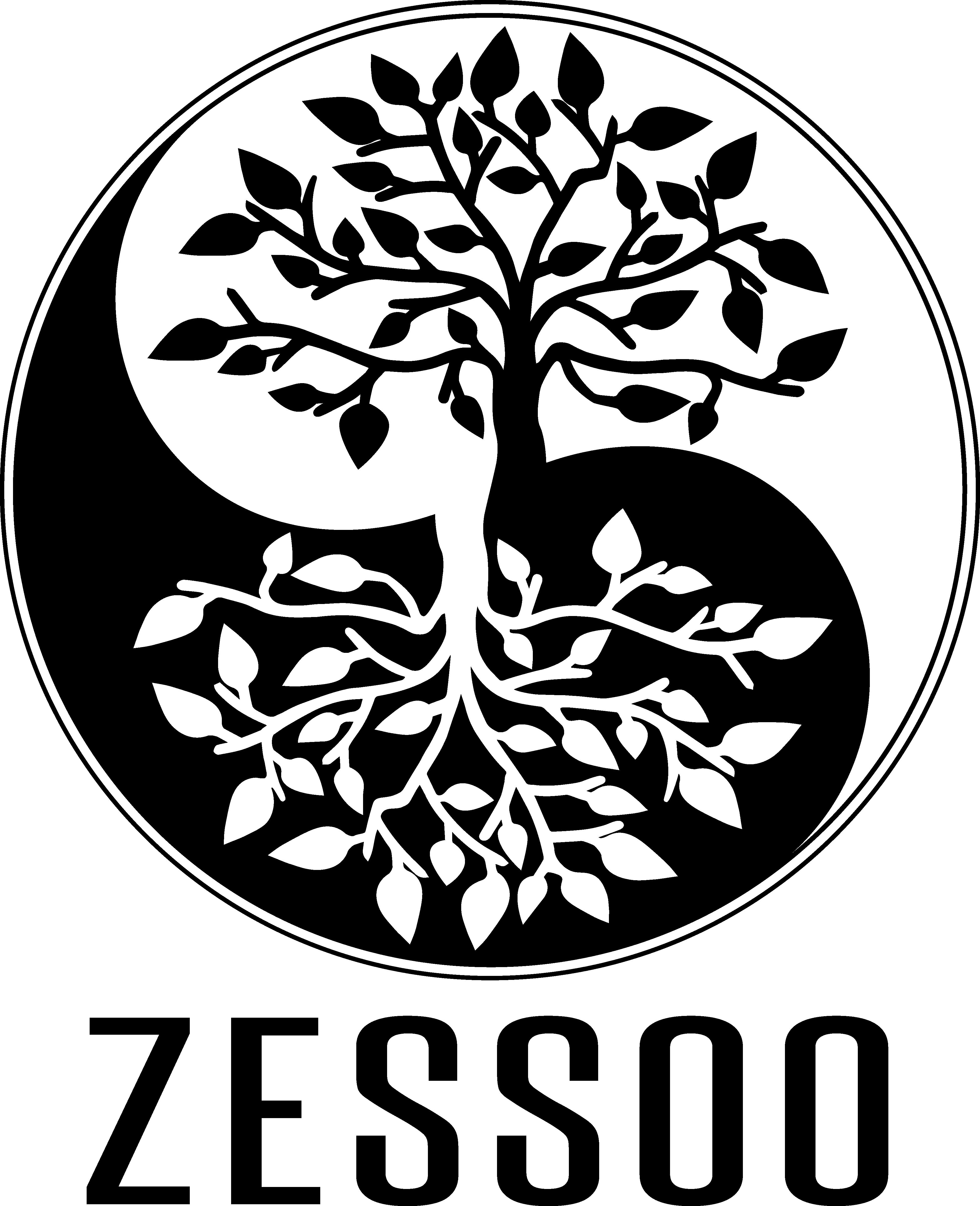 Zessoo