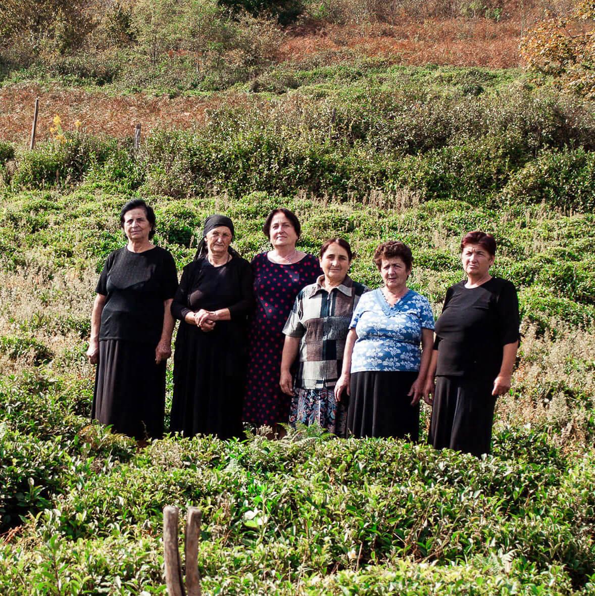 Zhoneti village tea plantation people